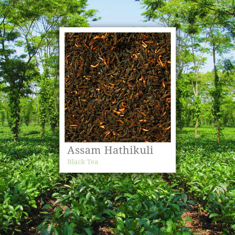 Assam Hathikuli Tea