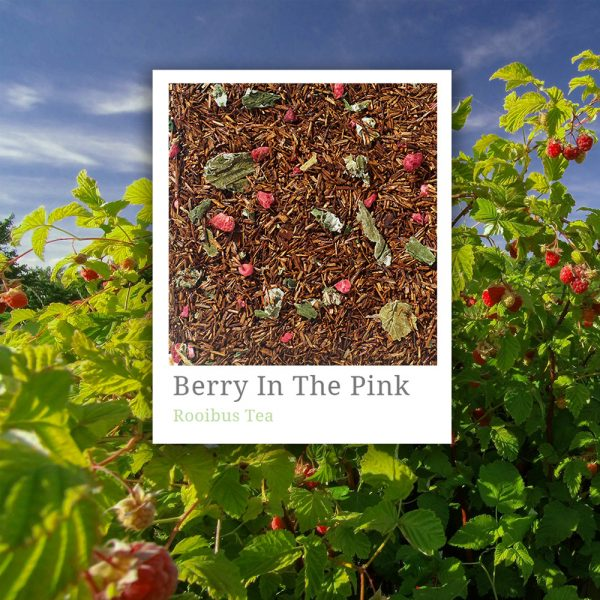 Berry In The Pink Tea
