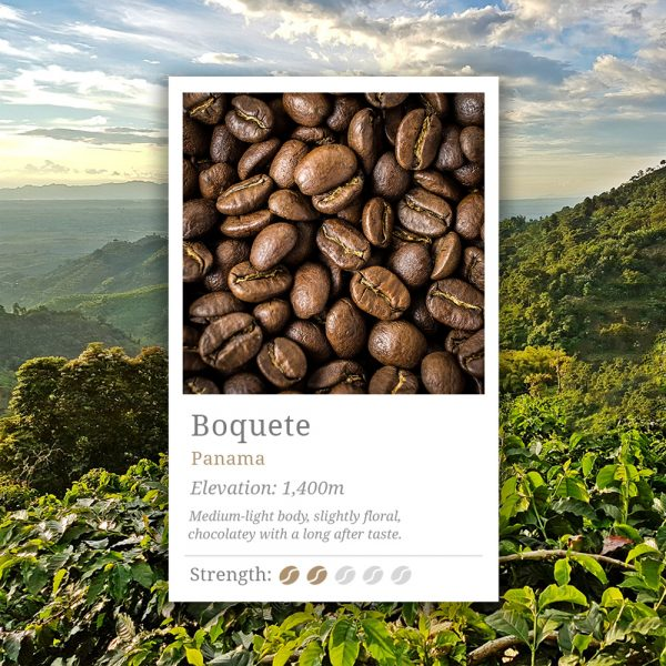 Panama Boquete Coffee