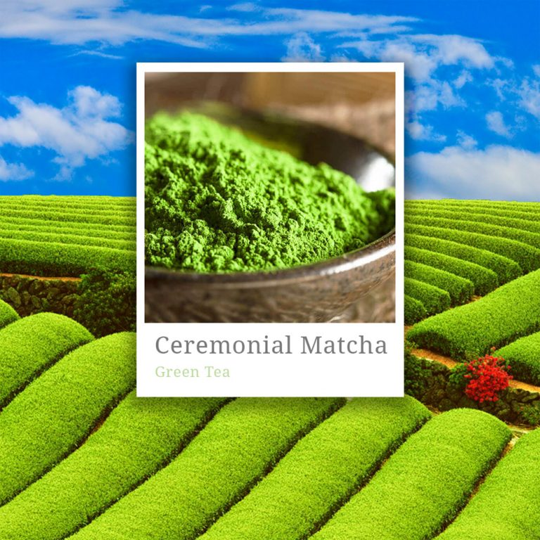 Ceremonial Grade Matcha Tea