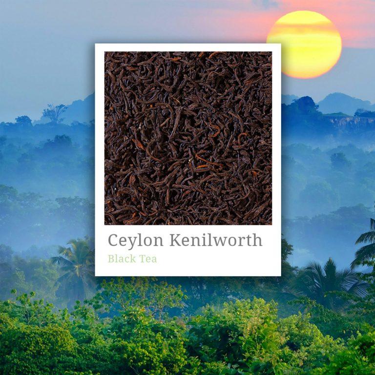 Ceylon Kenilworth Tea
