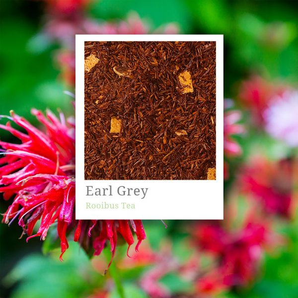 Rooibus Earl Grey Tea