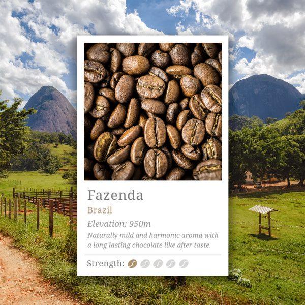 Brazil Fazenda