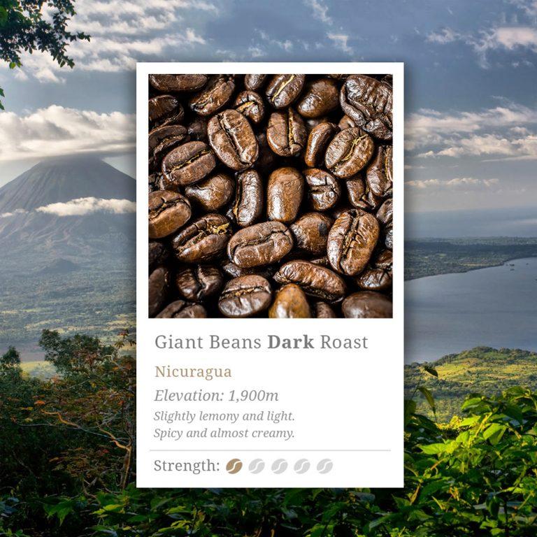 Nicaragua Dark Roast Coffee