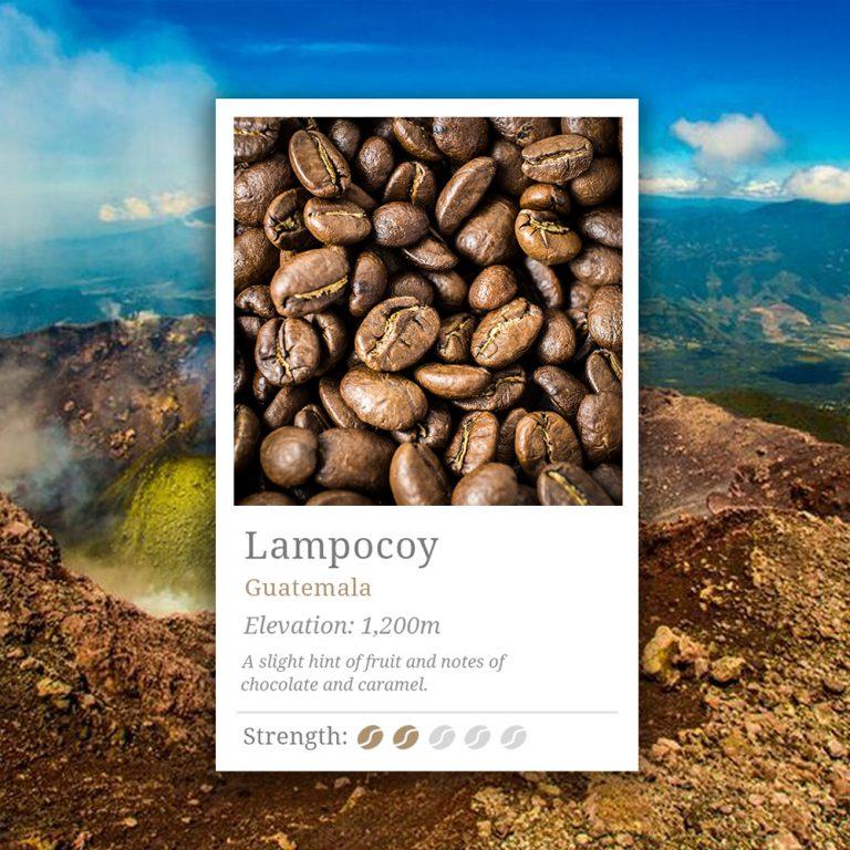 Guatemala Lampocoy Coffee