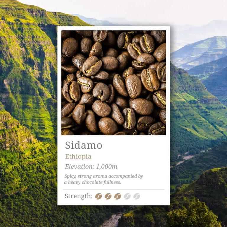 Ethopian Sidamo Coffee