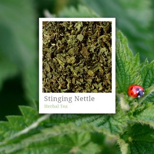 Stinging Nettle Herbal Tea