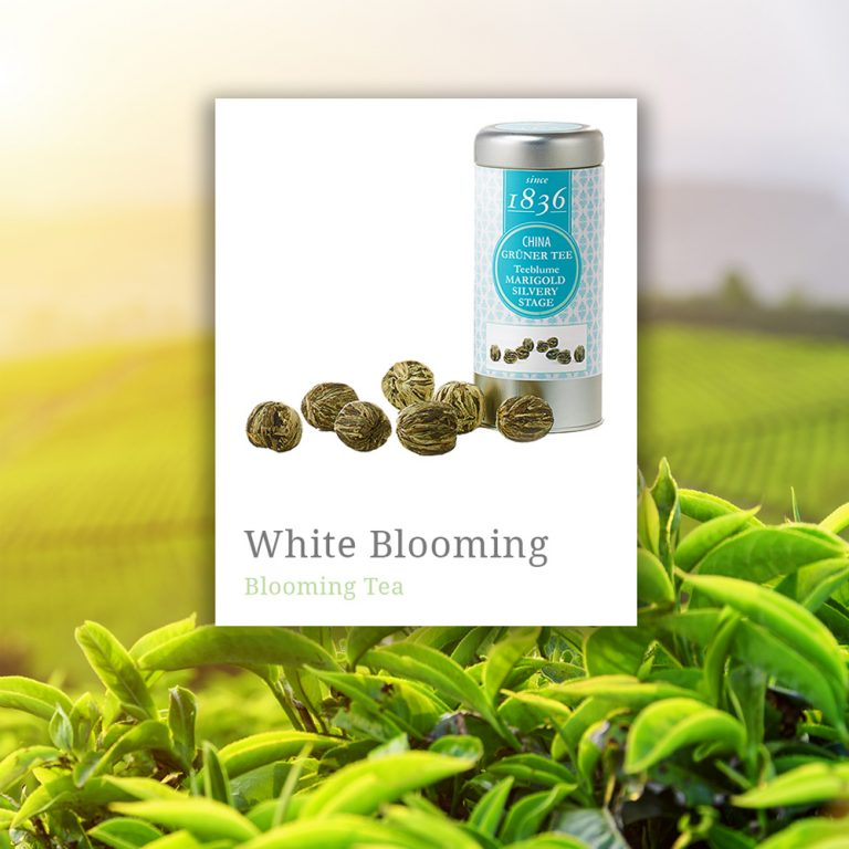Blooming White Tea