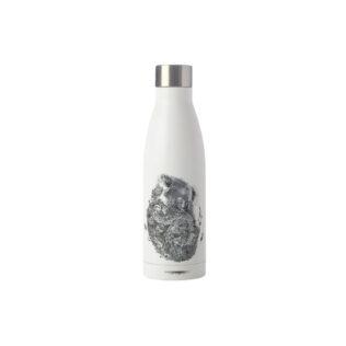Koala Friends Insulated Bottle